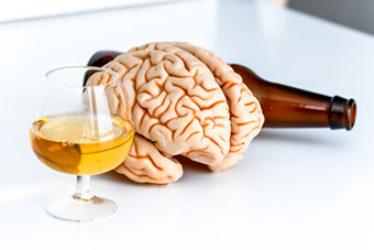 Alcohol next to a model of a brain